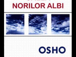 Osho - Calea Mea, Calea Norilor Albi