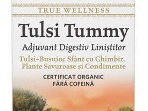 Ceai Digestiv Tulsi (Busuioc Sfant) Tummy cu Ghimbir, Plante Savuroase si Condimente Organic India 18dz